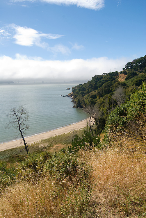 Angel Island by Anthony Estes