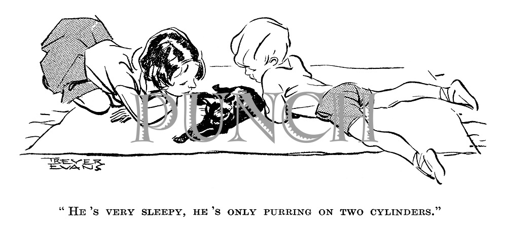 """He's very sleepy, he's only purring on two cylinders."""