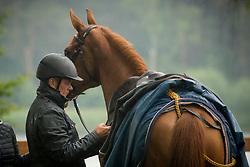 Dubbeldam Jeroen, NED, Roelofsen Horse Trucks Gioia Van Het Neerenbosch <br /> CSI Eindhoven 2018<br /> © Sharon Vandeput<br /> 15:01:49