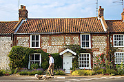 Man walks his dogs past typical brick and flint Norfolk home near Burnham Market, UK