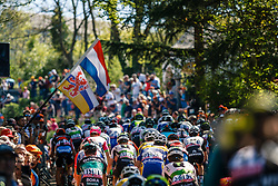 Peloton with MCCARTHY Jay of BORA - hansgrohe during the 1st lap on Mur de Huy at the 2018 La Flèche Wallonne race, Huy, Belgium, 18 April 2018, Photo by Thomas van Bracht / PelotonPhotos.com | All photos usage must carry mandatory copyright credit (Peloton Photos | Thomas van Bracht)