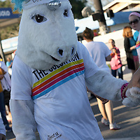 "A unicorn serves as a mascot of the Color Run Orlando, and is seen prior to the event.  Billed as the ""Happiest 5K on the Planet,? the Color Run is a family-friendly run for those who don't mind getting dust thrown at them after beginning the race with a plain white t-shirt on. This is the first event of the season and occured at the Citrus Bowl in downtown Orlando, Florida on January 13, 2013. (AP Photo/Alex Menendez)"