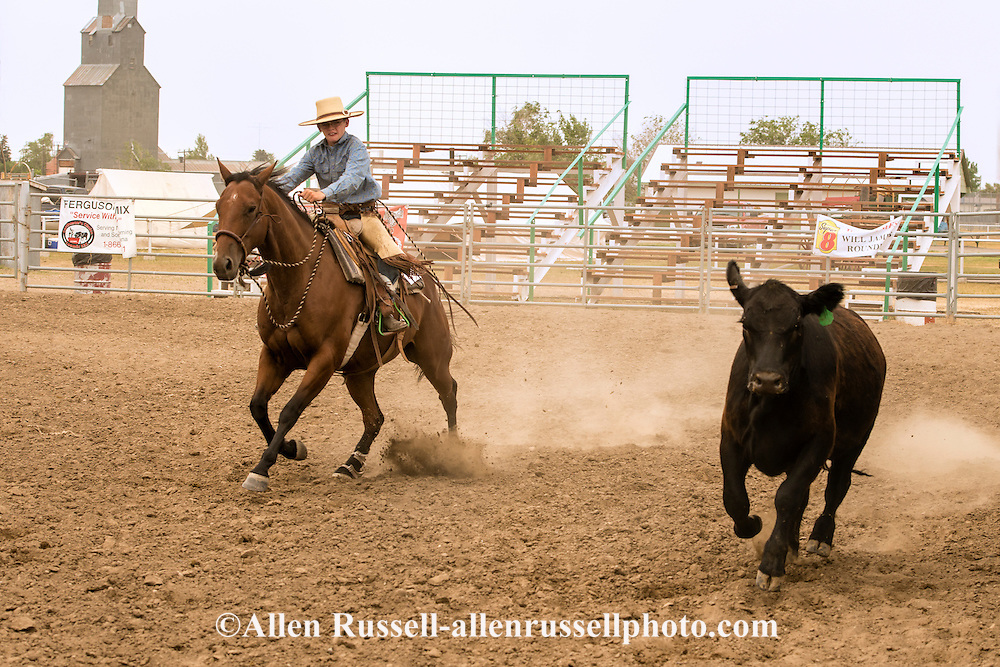 Will James Roundup, Ranch Rodeo, Working Ranch Horse, Hardin, Montana, Garrett Severe, MODEL RELEASED, PROPERTY RELEASED rider & horse