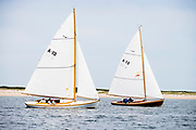 Myth and Owl sailing in the Opera House Cup regatta.