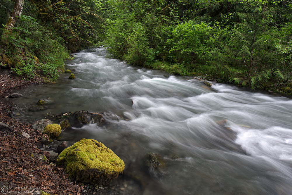 Spring runoff at Borden Creek in the Chilliwack River Valley, Chilliwack, British Columbia, Canada.