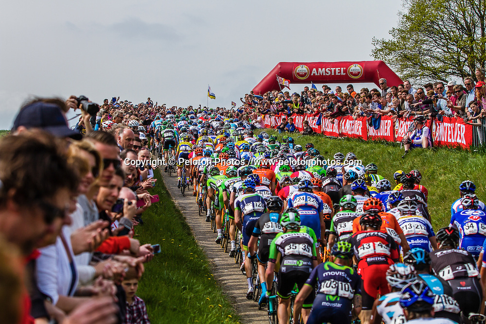 Peloton at Gulpenerberg, Gulpen, Amstel Gold Race, 20th April 2014, Photo by Thomas van Bracht / PelotonPhotos.com