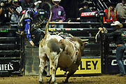 Ryan Dirteater is thrown from Ringo Kidd during the 25th Professional Bull Riders  Unleash the Beast Music City Knockout in Nashville, Tenn., Friday, Aug 17, 2018.(Michelle Donovan/Image of Sport)