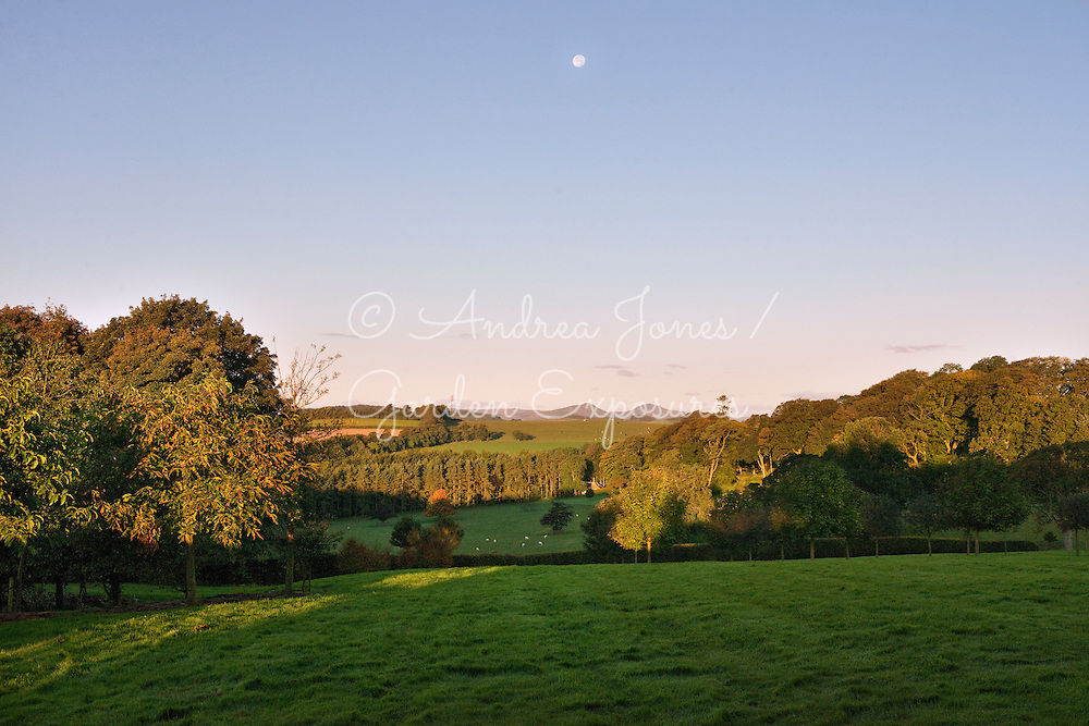 View from the lawns west towards the Lomond Hills, woodland and fields<br /> Teasses Estate, Ceres, Fife