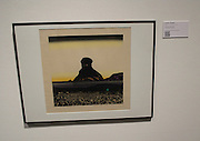 Hodaka Yoshida        <br />