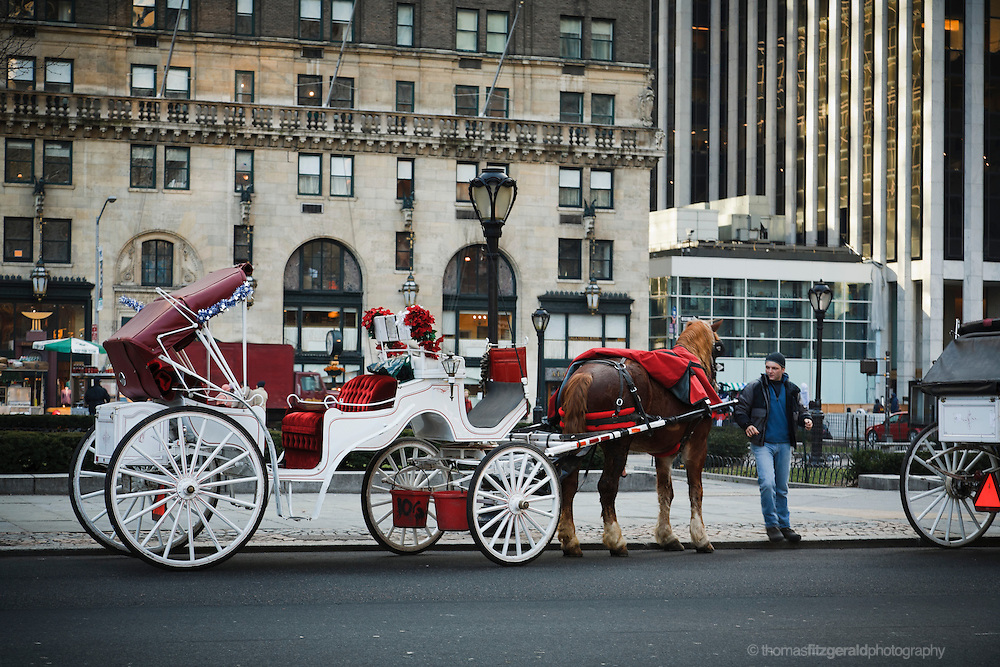A carriage driver waits for a fare at the side of Central Park