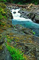 Salmon Cascades on the Sol Doc River.  Olympic National Park, Washington, USA.
