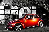 Vocho ~  Beetle ~ Käfer