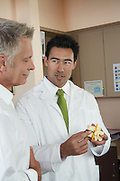 Two doctors looking at medical model