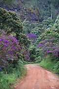 Alto Caparao_MG, Brasil...Estrada de terra no Parque Nacional do Caparao...The land road in the National Park of Caparao...Foto: BRUNO MAGALHAES / NITRO