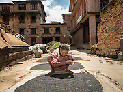 04 AUGUST 2015 - BUNGAMATI, NEPAL: A woman whose home was destroyed in the earthquake dries lentils in the town square in Bungamati, a village about an hour from Kathmandu. Three months after the earthquake many families still live in tents and temporary shelters scattered around the village. The Nepal Earthquake on April 25, 2015, (also known as the Gorkha earthquake) killed more than 9,000 people and injured more than 23,000. It had a magnitude of 7.8. The epicenter was east of the district of Lamjung, and its hypocenter was at a depth of approximately 15km (9.3mi). It was the worst natural disaster to strike Nepal since the 1934 Nepal–Bihar earthquake. The earthquake triggered an avalanche on Mount Everest, killing at least 19. The earthquake also set off an avalanche in the Langtang valley, where 250 people were reported missing. Hundreds of thousands of people were made homeless with entire villages flattened across many districts of the country. Centuries-old buildings were destroyed at UNESCO World Heritage sites in the Kathmandu Valley, including some at the Kathmandu Durbar Square, the Patan Durbar Squar, the Bhaktapur Durbar Square, the Changu Narayan Temple and the Swayambhunath Stupa. Geophysicists and other experts had warned for decades that Nepal was vulnerable to a deadly earthquake, particularly because of its geology, urbanization, and architecture.    PHOTO BY JACK KURTZ