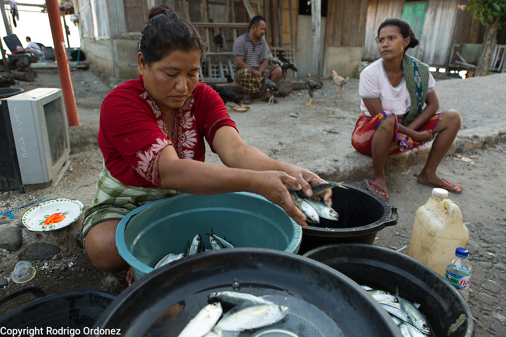 Umikalsum, 41 (left), sells fish outside the family home to vendors from the nearby fish market. Behind her is her husband Ode Umar, 51. They live in Kubur Cina, a neighbordhood of Lewoleba, Nubatukan subdistrict, Lembata district, East Nusa Tenggara province, Indonesia.