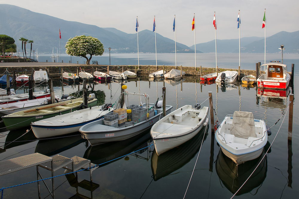 Europe; Switzerland; Ticino; Ascona, small boat harbor