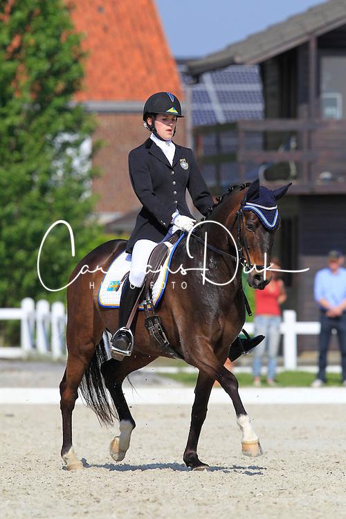 Egholm Hebsgaard Amalie (SWE) - Extrem<br /> CDIJY Het Zilveren Spoor 2010<br /> &copy; Hippo Foto - Leanjo de Koster