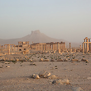 Palmyra ruins and mountains, early morning