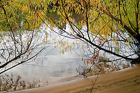 Images of the Altamaha River, Georgia in Fall View of the Altamaha River in Southeast Georgia