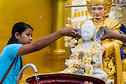 15 JUNE 2013 - YANGON, MYANMAR: A woman bathes a statue of the Buddha to make merit at Shwedagon Pagoda. Shwedagon Pagoda is officially known as Shwedagon Zedi Daw and is also called the Great Dagon Pagoda or the Golden Pagoda. It is a 99 meter (325 ft) tall pagoda and stupa located in Yangon, Burma. The pagoda lies to the west of on Singuttara Hill, and dominates the skyline of the city. It is the most sacred Buddhist pagoda in Myanmar and contains relics of the past four Buddhas enshrined: the staff of Kakusandha, the water filter of Koṇāgamana, a piece of the robe of Kassapa and eight strands of hair from Gautama, the historical Buddha. Burmese believe the pagoda was established as early ca 540BC, but archaeological suggests it was built between the 6th and 10th centuries. The pagoda has been renovated numerous times through the centuries. Millions of Burmese and tens of thousands of tourists visit the pagoda every year, which is the most visited site in Yangon. PHOTO BY JACK KURTZ