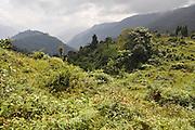 India, Sikkim landscape