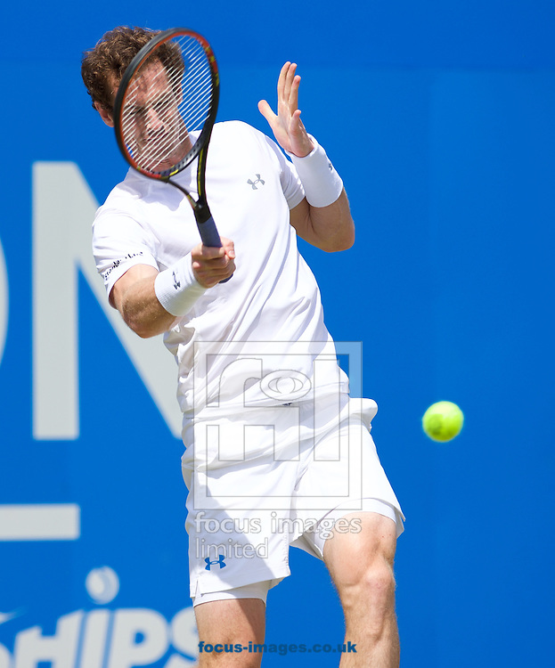 Andy Murray of Great Britain during his second round match against Fernando Verdasco of Spain in the Aegon Championships at the Queen's Club, West Kensington<br /> Picture by Alan Stanford/Focus Images Ltd +44 7915 056117<br /> 18/06/2015