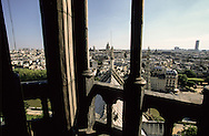 France. Paris. Notre Dame cathedral. pantheon hill and church and the Seine river view from the spire of Notre dame cathedral