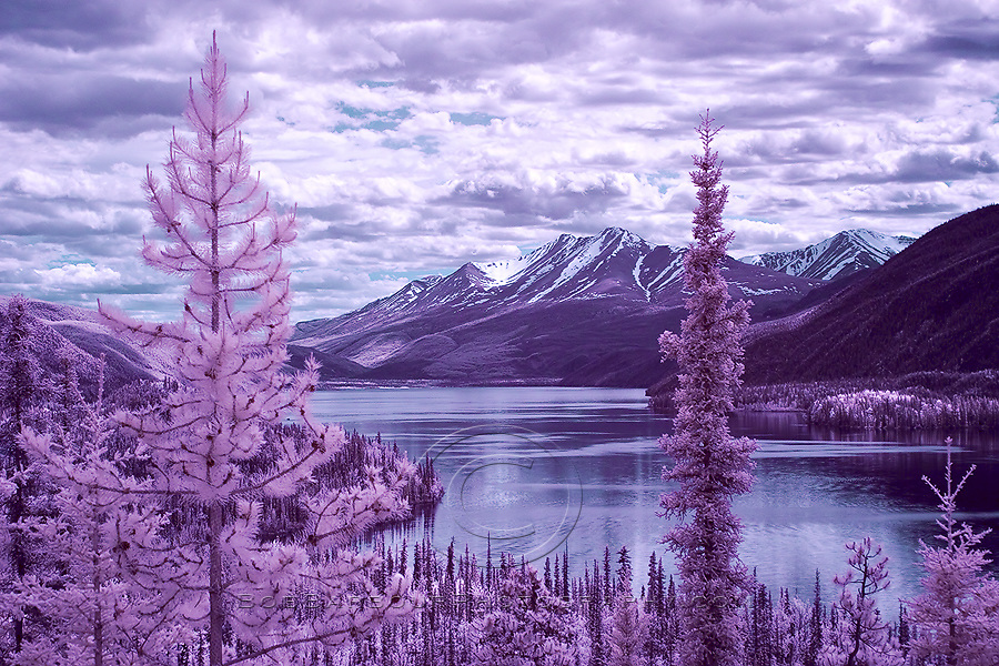 Infrared photo of Muncho Lake British Columbia, Canada color tone
