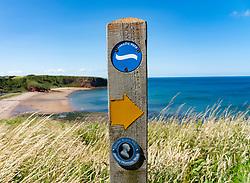 Marker or James Hutton Walk on Coastal Path at Pease Bay in Berwickshire, Scotland, UK