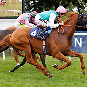 Seek Again and William Buick winning the 4.20 race
