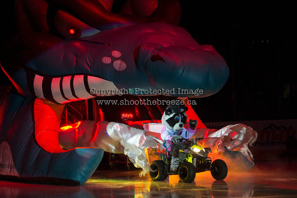 KELOWNA, CANADA - SEPTEMBER 22: Rocky Racoon, the mascot of the Kelowna Rockets enters the ice for home opener against the Kamloops Blazers on September 22, 2017 at Prospera Place in Kelowna, British Columbia, Canada.  (Photo by Marissa Baecker/Shoot the Breeze)  *** Local Caption ***