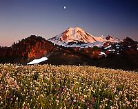 Moon over Mount Baker from Skyline Divide, Mount Baker Wilderness Washington USA