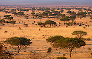 The Serengeti Plain in the Serengeti National Park, Tanzania.Grumeti,Tanzania, East Africa