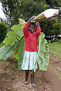 Young girl carries banana leaves in Ngiresi Village close to Arusha in Tanzania.