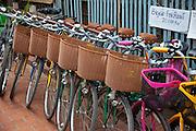 Luang Prabang, Laos. Bicycles for rent at the morning food market.