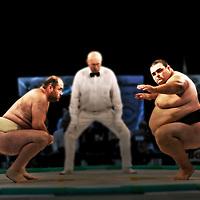 Sumo: European championship