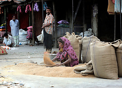 BANGLADESH DHAKA KAWRAN BAZAAR 1MARB05 - A woman separates the rice from the chaff at Kawran Bazaar vegetable market. The Bazaar has been in the Tejgaon area for at least 30 years and is one of the largest markets in Dhaka city...jre/Photo by Jiri Rezac ..© Jiri Rezac 2005..Contact: +44 (0) 7050 110 417.Mobile:  +44 (0) 7801 337 683.Office:  +44 (0) 20 8968 9635..Email:   jiri@jirirezac.com.Web:    www.jirirezac.com..© All images Jiri Rezac 2005- All rights reserved.