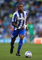 Brighton and Hove Albion's Gaetan Bong