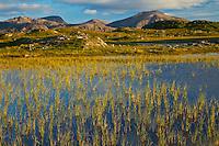 Lago Loch Dail Beag (Lake).  Playa Dhail Beag Beach. West Lewis island. Outer Hebrides. Scotland, UK