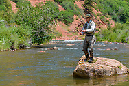 A fly fisherman makes a cast in the Fryingpan River near Basalt, Colorado.