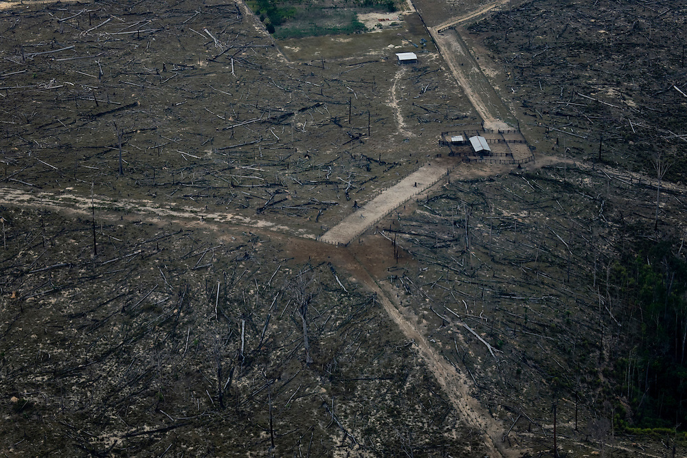 Para State, Brazil. August 25th 2007. Flight from Cuiaba to Alta Floresta (Brazilian Amazon). Aerial view of the rainforest during the burning season were big sections are set on fire by farmers to be cleared for soy farming or cattle grazing.