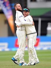 Wellington-Cricket, New Zealand v Sri Lanka, 2nd test, day 4