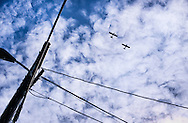 Two airplanes fly overhead, in a windswept cloudy blue sky, framed by powerlines.<br /> <br /> More about this image on the blog: https://goo.gl/oPdzyN