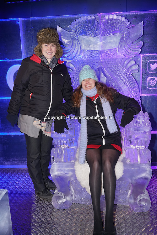 London,England,UK: 18th January 2016: Guests attends the 'Magical Lantern Festival' VIP Night with an all-new show transforming historic Chiswick House Gardens into a fairytale world of light sculptures, Chinese arts, Virtual Reality, games & food with a funfair and 600 square metres ice rink at Chiswick House Gardens  from January 19th - February 26th. by See Li