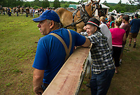 The horse pulling event drew spectators along the fence during Tilton Northfield's Old Home Day Saturday.  (Karen Bobotas/for the Laconia Daily Sun)