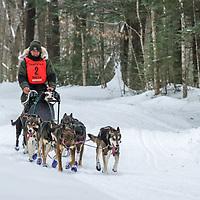 Sandwich Sled Dog Races, 45 Mile Race.