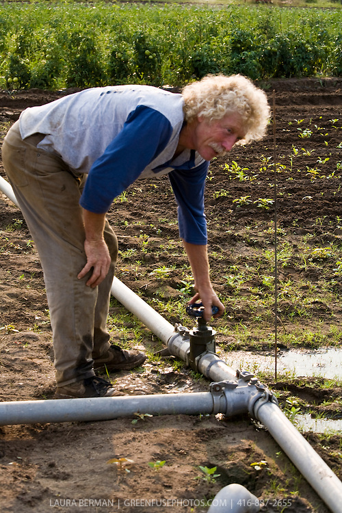 Organic farmer, Ted Thorpe, adjusts the water flow on the irrigation pipes in his farm fields.