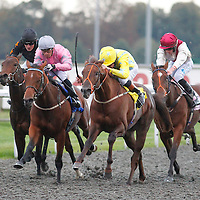 Kempton 12th October