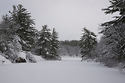Fresh snow on Pearce Lake in Breakheart Reservation, Wakefield, MA